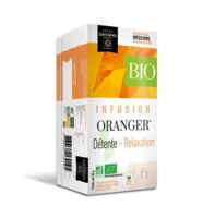 Dayang Oranger Bio 20 Infusettes à NOROY-LE-BOURG