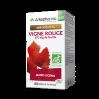 Arkogélules Vigne Rouge Bio Gélules Fl/45 à NOROY-LE-BOURG