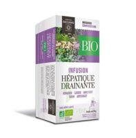 Dayang Hépatique Drainante Bio 20 Infusettes à NOROY-LE-BOURG
