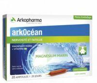 Arkocean Magnesium Marin Solution Buvable Caramel 20 Ampoules/10ml à NOROY-LE-BOURG