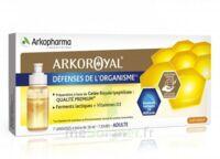 Arkoroyal Défenses Naturelles Gelée adulte 7 Doses/10ml à NOROY-LE-BOURG
