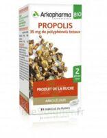 Arkogélules Propolis Bio Gélules Fl/45 à NOROY-LE-BOURG