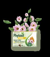 Phytoxil Gorge & Défenses naturelles Pastilles B/20 à NOROY-LE-BOURG