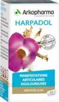 ARKOGELULES HARPAGOPHYTON, 150 gélules à NOROY-LE-BOURG