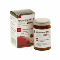 Vitamine B12 Gerda 250 Microgrammes, Comprimé Sécable à NOROY-LE-BOURG