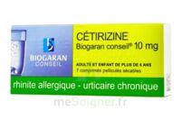 CETIRIZINE BIOGARAN CONSEIL 10 mg, comprimé pelliculé sécable à NOROY-LE-BOURG