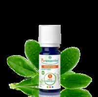 Puressentiel Huiles essentielles - HEBBD Ravintsara BIO* - 5 ml à NOROY-LE-BOURG