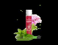 PURESSENTIEL ANTI-PIQUE Roller 11 huiles essentielles à NOROY-LE-BOURG