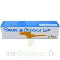 Calendula Lhf Pom T/20g à NOROY-LE-BOURG