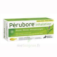 PERUBORE Caps inhalation par vapeur inhalation Plq/15 à NOROY-LE-BOURG
