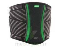 Dorsamix Taille 2 Noir/vert Hauteur 26cm à NOROY-LE-BOURG
