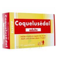 COQUELUSEDAL ADULTES, suppositoire à NOROY-LE-BOURG