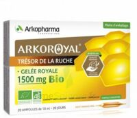 Arkoroyal Gelée Royale Bio 1500 Mg Solution Buvable 20 Ampoules/10ml à NOROY-LE-BOURG