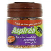 Aspiréa Grain pour aspirateur Cannelle Orange Huile essentielle Bio 60g à NOROY-LE-BOURG