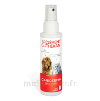Clément Thékan Caniderma Solution externe cicatrisant Spray/125ml à NOROY-LE-BOURG