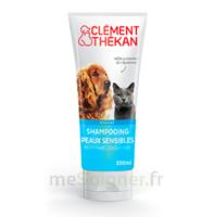 Clément Thékan Shampooing peaux sensibles T/200ml à NOROY-LE-BOURG