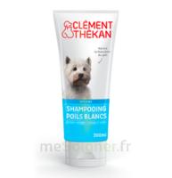 Clément Thékan Shampooing poils blancs T/200ml à NOROY-LE-BOURG