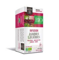 Dayang Jambes Légères Bio 20 Infusettes à NOROY-LE-BOURG