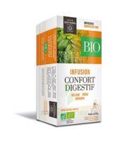 Dayang Confort Digestif Bio 20 Infusettes à NOROY-LE-BOURG