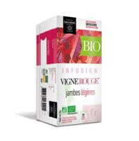 Dayang Vigne Rouge Bio 20 Infusettes à NOROY-LE-BOURG