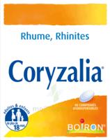 Boiron Coryzalia Comprimés Orodispersibles à NOROY-LE-BOURG